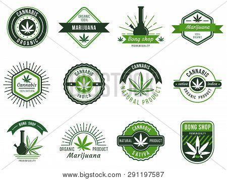 Marijuana Label. Smoke Weeds, Cannabis Joint And Hashish Or Weed Smoking Device. Marijuana Seeds Vec