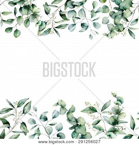 Watercolor Different Eucalyptus Seamless Border. Hand Painted Eucalyptus Branch And Leaves Isolated