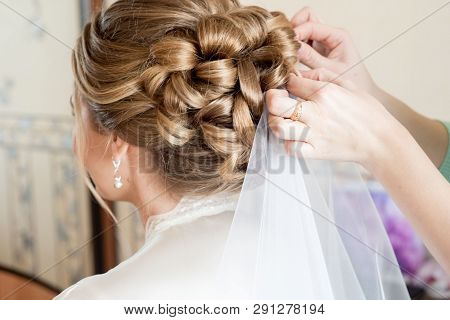 Blonde Bride Hairstyle. White Veil. Stylist Helps The Bride At Home