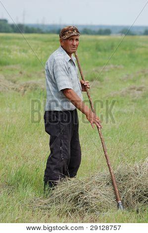 ukrainian peasant work with  rakes. Ukraine, 2008 june 13,near Kiev