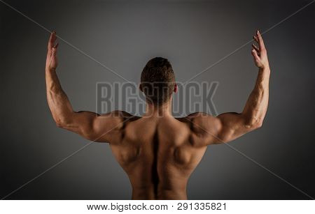 Muscular Back, Male Naked, Healthy Muscular Guy, Torso Man. Muscled Back, Strong Man, Bodybuilder, M