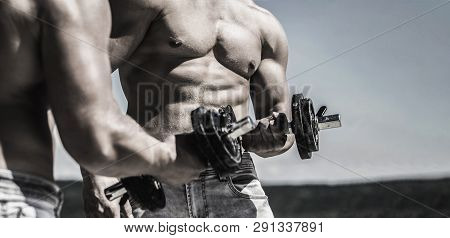 Dumbbell. Muscular bodybuilder guys, exercises with dumbbells. Strong bodybuilder, perfect deltoid muscles, shoulders, biceps, triceps and chest. Muscles with dumbbell. Man training with dumbbells. poster