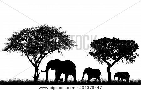 Realistic Illustration Of Landscape With Trees In African Safari. A Family Of Three Elephants With A