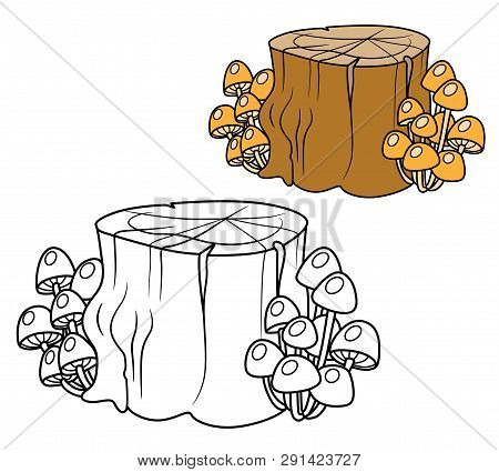 Rotten Stump Overgrown With Mushrooms Toadstools Color And Outlined For Coloring Page