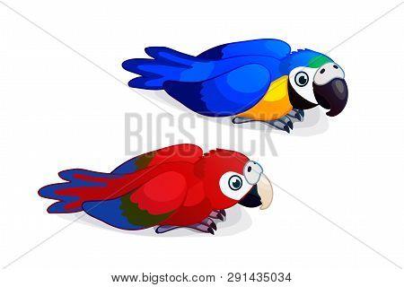 Vector Cartoon Animal Clipart: Ara Parrots, Macaw