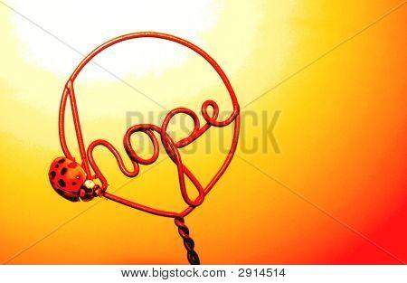 Hope And A Ladybug