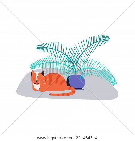 Cute Kitten Sleep Near Houseplant. Guilty Cat Colorful Concept Isolated On White Background. Naughty