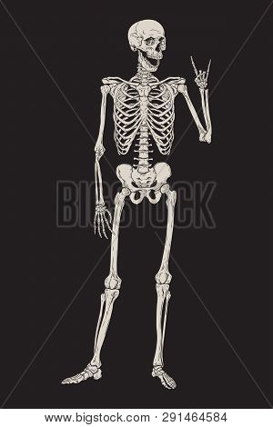 Human Skeleton Posing Isolated Over Black Background Vector Illustration. Hand Drawn Gothic Style Pl