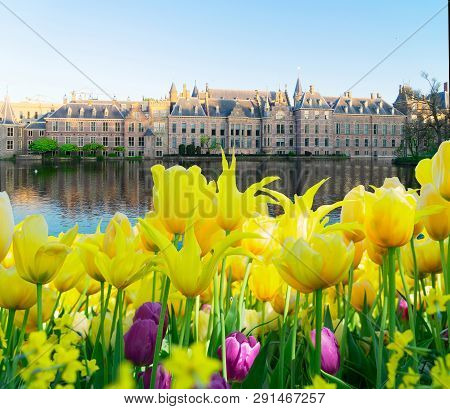 Facade Of Binnenhof - Dutch Parliament With Tulips, The Hague, Holland