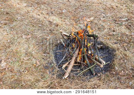 Bonfire In The Spring Forest On The Background Of Withered Grass.