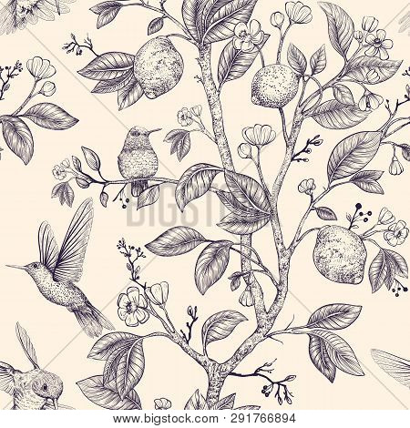Vector Sketch Pattern With Birds And Flowers. Hummingbirds And Flowers, Retro Style, Nature Backdrop
