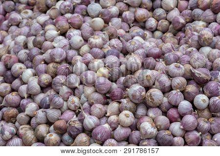 Heap Fo Sichuan Garlic Close-up In A Chinese Market, Chengdu, China