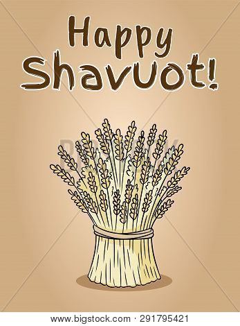 Happy Shavuot Jewish National Holiday. Sheaf Of Wheat Bundle