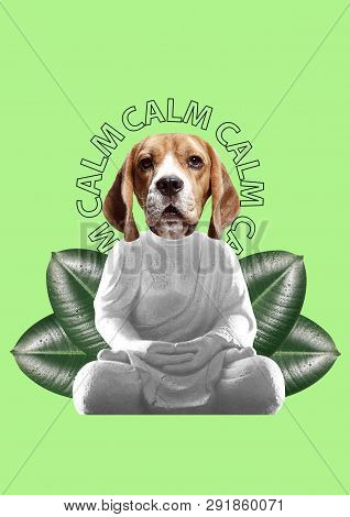 Keep Calm And Combine Incompatible Things. Feel Appeasement And Tranquility. Buddahs Statue With Dog