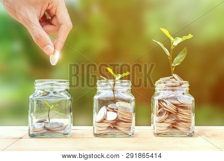 poster of Money savings, investment, making money for future, financial wealth management concept. A man hand holding coin over stacked coins in glass jar and growing tree plant depicts Fund growth and wealth.