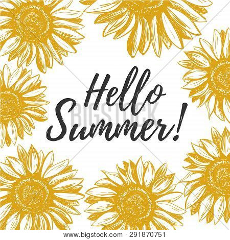 Hello Summer Hello Summer Greeting Card With Yellow Sunflowers Hello Summer Vector Illustration Poster Id 291870751