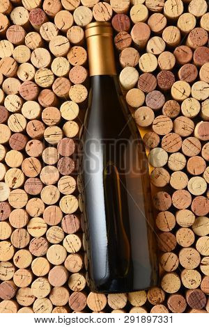 Chardonnay Wine: A bottle of Chardonnay surrounded by corks standing on end filling the frame. Bottle has no label.