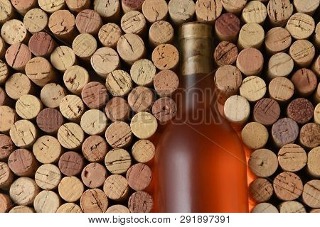 Blush Wine Still Life: Closeup of a bottle of White Zinfandel wine surrounded by used corks with copy space.  The bottle has no label.