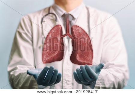 Image Of A Doctor In A White Coat And Lungs Above His Hands. Concept Of Healthy Lungs.