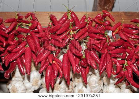 Red Chili Peppers Bunches Hanging In A Front Of Garlic Bunches