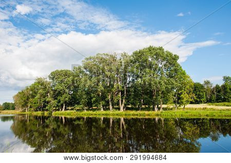 Beautiful still lake with trees on the horizon and white puffy clouds in the sky. Peaceful summer day at the cottage. Large green trees on a lake poster