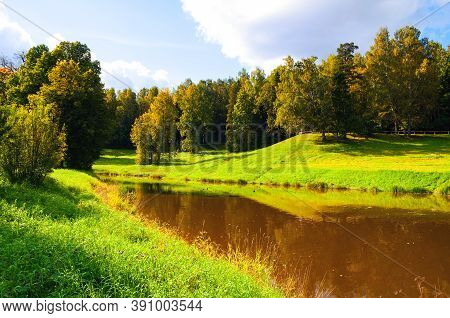 Autumn landscape. Autumn forest trees at the bank of the forest river in sunny autumn weather. Colourful autumn October forest in sunny autumn day. Autumn forest landscape