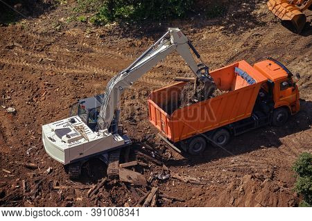 Truck And Bulldozer Are Being Built Near The Green Tree, Top Vi, Close-up, Lifestyle Ew
