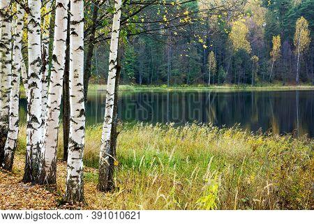 Autumn Lake Svetloyar In The Nizhny Novgorod Region In Russia
