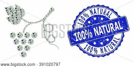 100 Percent Natural Grunge Round Stamp Seal And Vector Fractal Collage Grape Plant. Blue Stamp Seal