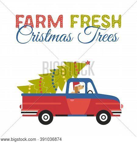 Farm Fresh Christmas Trees Flat Color Vector Icon. Winter Holidays Hand Drawn Cartoon. Cute Comic Do