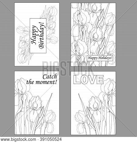 Greeting Cards, Coloring Pages, Greetings Cards With Iris Flowers
