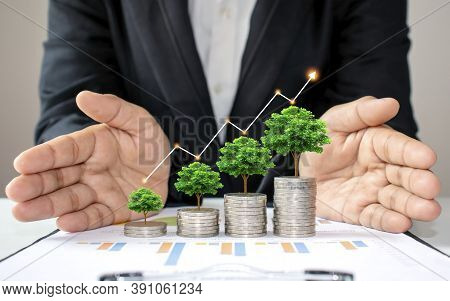 The Green Tree That Is Growing On Coins Increases In Various Forms, Including The Hands Of Business