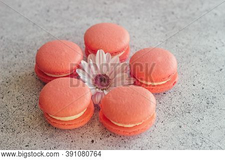 Macaroons. Delicious French Desserts. Macaroons On The Table. Macaroons With Flower