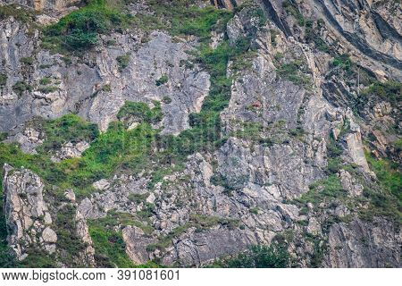 Huge Rocks Background With Chamois On Top Of Them