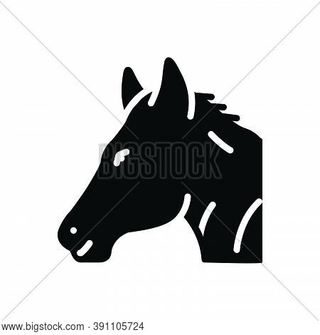 Black Solid Icon For Horse Steed Animal Domestic Running Pony Mustang