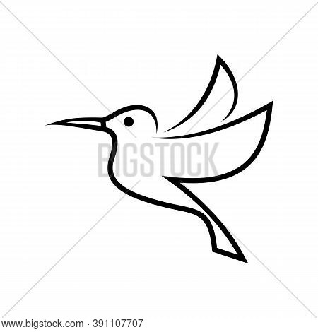 Stylized Hummingbird Icon Or Logo In Different Styles, Line Art, Solid Black And Color. Isolated Col