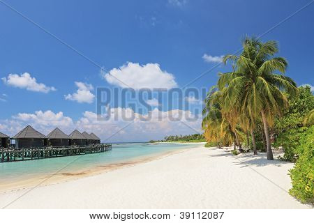 Scene of sandy beach with palm trees and water villa cottages at Kuredu island, Maldives, Lhaviyani atoll