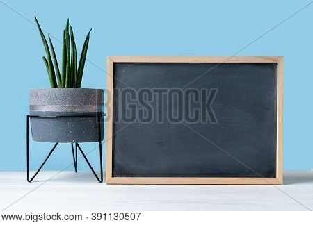 Room Interior With Mock Up Chalk Blackboard Frame On The Wooden Table With Beautiful Cacti And Succu