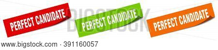 Perfect Candidate Sticker. Perfect Candidate Square Isolated Sign. Perfect Candidate Label
