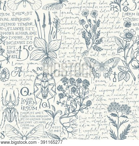 Vector Seamless Pattern With Medicinal Herbs, Insects And Handwritten Text Lorem Ipsum. Retro Style