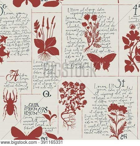 Seamless Pattern With Handwritten Text Lorem Ipsum And Hand-drawn Silhouettes Of Medicinal Herbs And