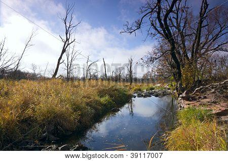Pipestone Creek And Park