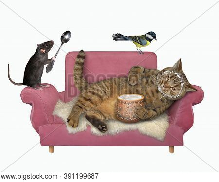A Beige Lazy Cat Is Lying On A Pink Divan And Eating Sour Cream From A Clay Pot. White Background. I