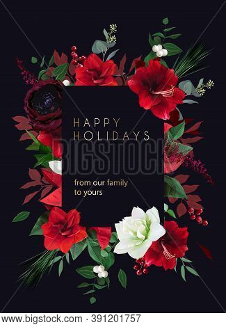 Christmas Joy Black Floral Vector Frame. Red Amaryllis, Poinsettia, Green Fir Branch, Holly, Mistlet