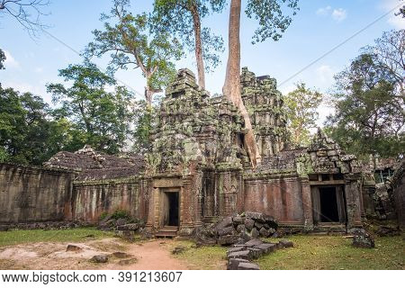 Ta Prohm Temple, One Of Angkor's Best Visited Monuments. It Is Known For The Huge Trees And Massive