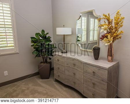 Bedroom Furniture Including Wooden Dresser, Wall Mirror & Corner Plant