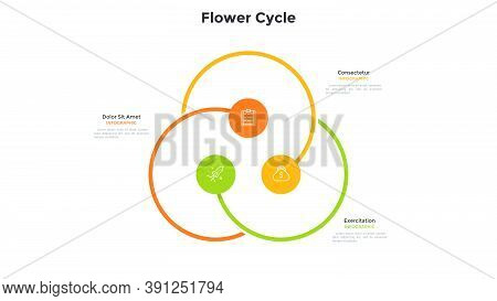 Flower Cyclic Chart With 3 Colorful Round Elements. Concept Of Three Options Of Startup Project. Mod