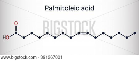 Palmitoleic Acid, Palmitoleate Molecule. It Is An Omega-7 Monounsaturated Fatty Acid. Skeletal Chemi