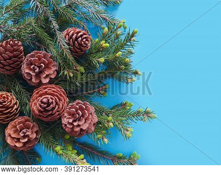 Fir Cones And Spruce Green Branches On A Blue Background. The Basis For The New Year And Christmas C