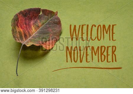 welcome November handwriting on handmade green rag paper witha dried leaf of Asian pear tree, season concept